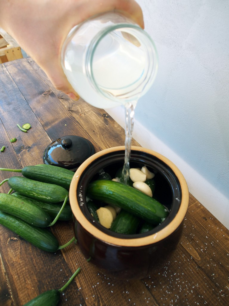 How to make pickles, step by step