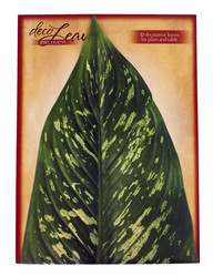 Large Tropical Cheese Leaves by Deco Leaves
