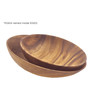 "Acacia Wood Conch Bowl, 12"" X 12"" X 4"""